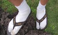 calzado-guiri