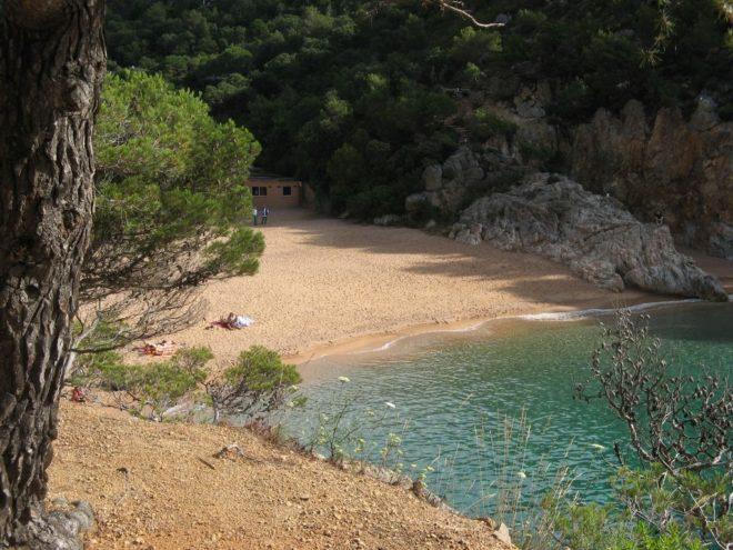 Plaża Camping Pola
