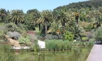 Ogród Montjuïc