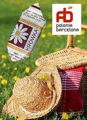 piknik-flyer