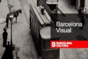 bcn-visual-app