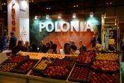 polonia-fruit