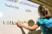 polski-jezyk-ankieta